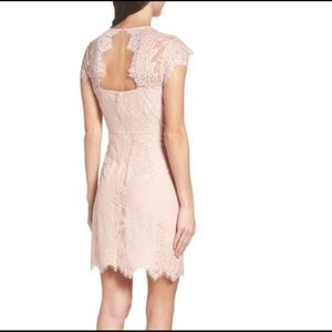 NWT BB Dakota Jayce Lace Sheath Cocktail Dress